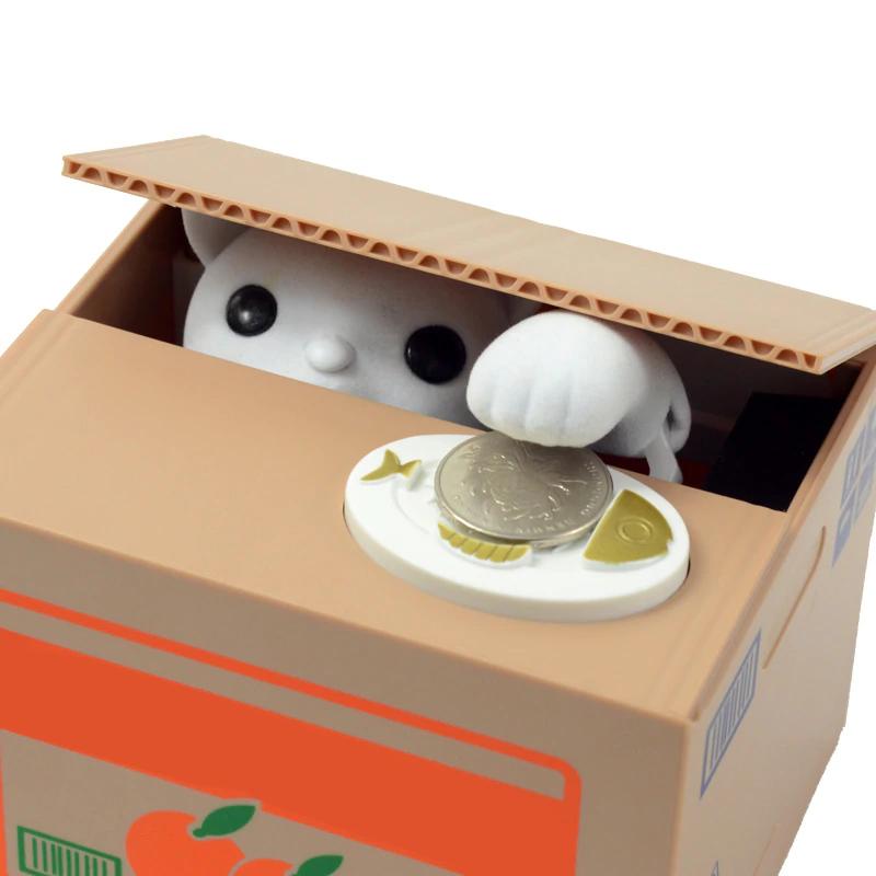 Spardose Katze im Karton Schweiz