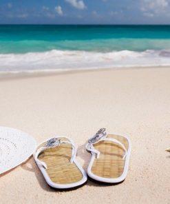 Sommer & Urlaub