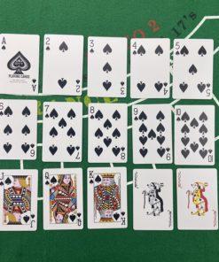 Premium Plastik Poker Karten Schweiz