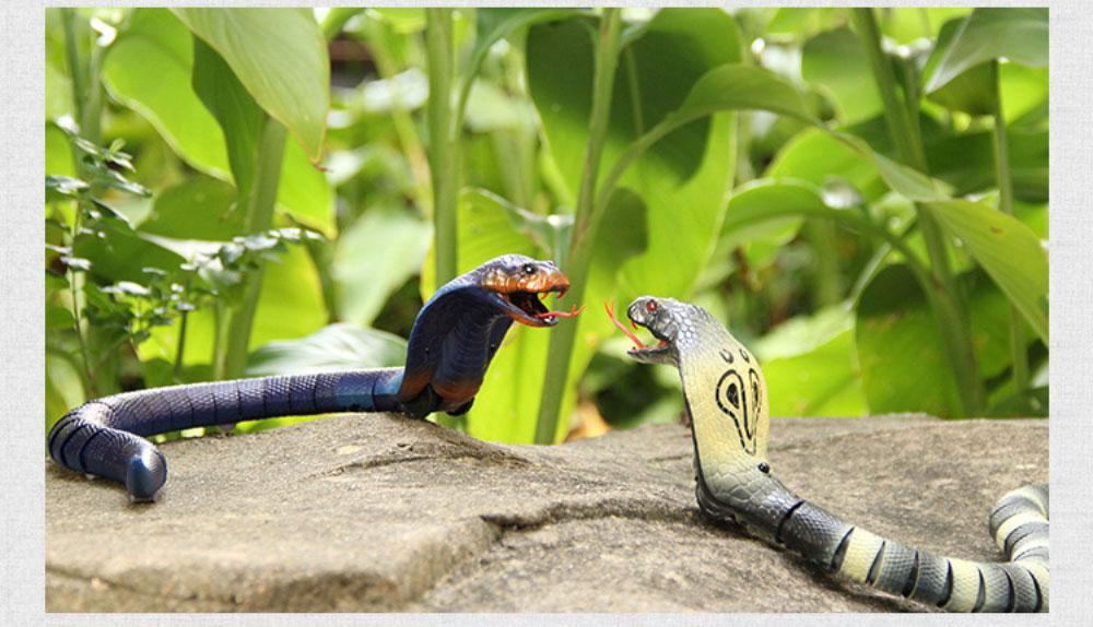 ferngesteuerte Schlange kaufen Schweiz