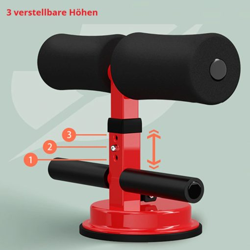 Sit-Up Stange kaufen Schweiz